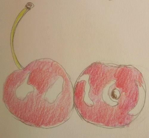 Rysunek wiśni