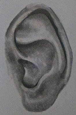 Rysunek ucha (6)