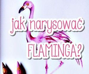 Jak narysować krok po kroku flaminga?