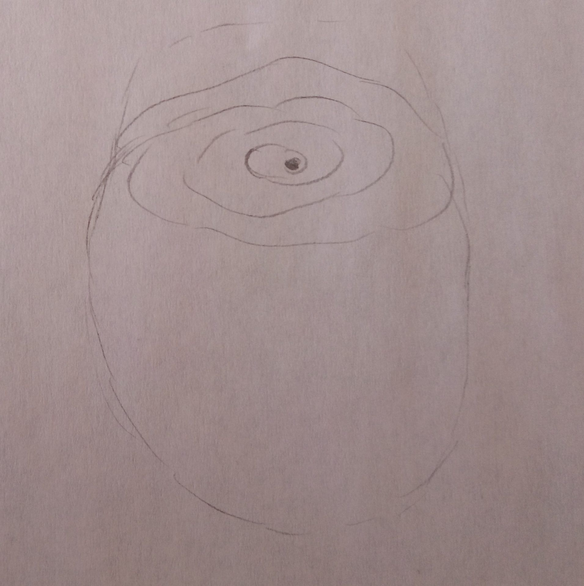 kwiaty-rysunek (2)