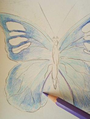 motyl jak narysować (2)