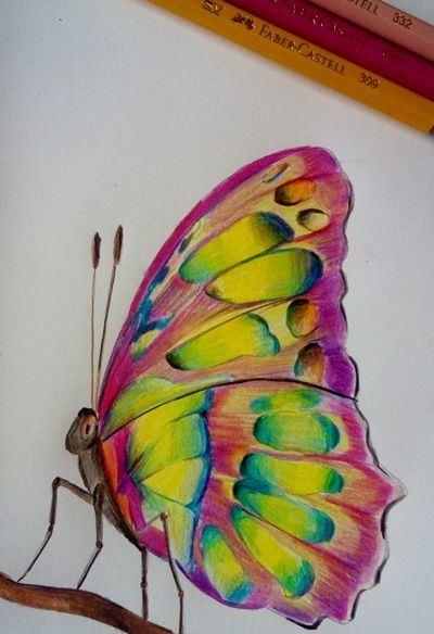 motyl jak narysować (6)