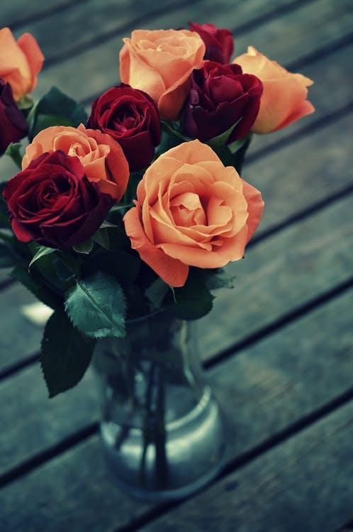 Jak narysować różę? Krok po kroku…