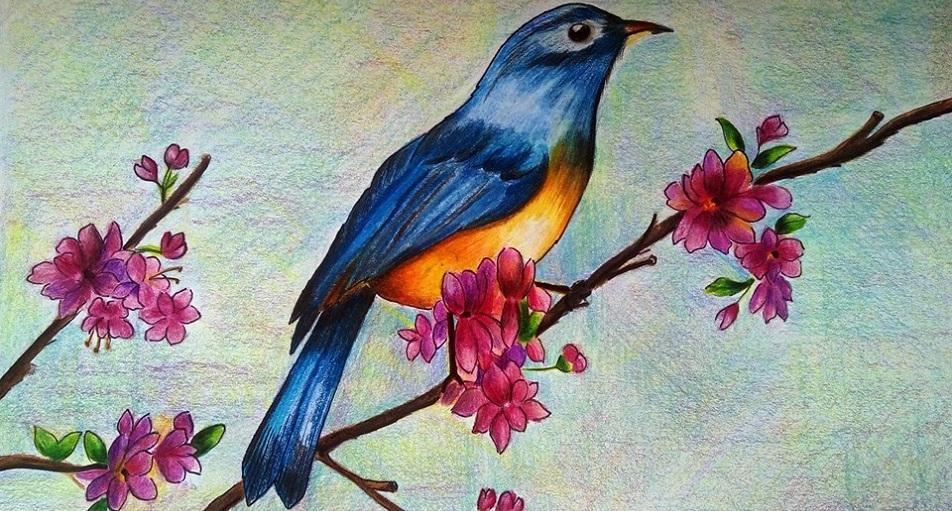 rysunek ptak na zamówienie